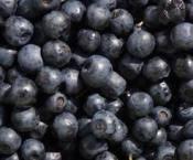 Blueberry Wine Recipe